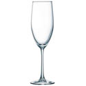 Cardinal Rutherford 8.5 oz. Champagne Glass