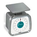 Taylor Heavy Duty Control Scale